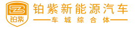 浙江铂紫新能源汽车有限公司